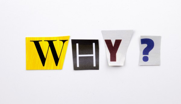 Why you should ask Why!